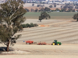 Tractor working in paddock