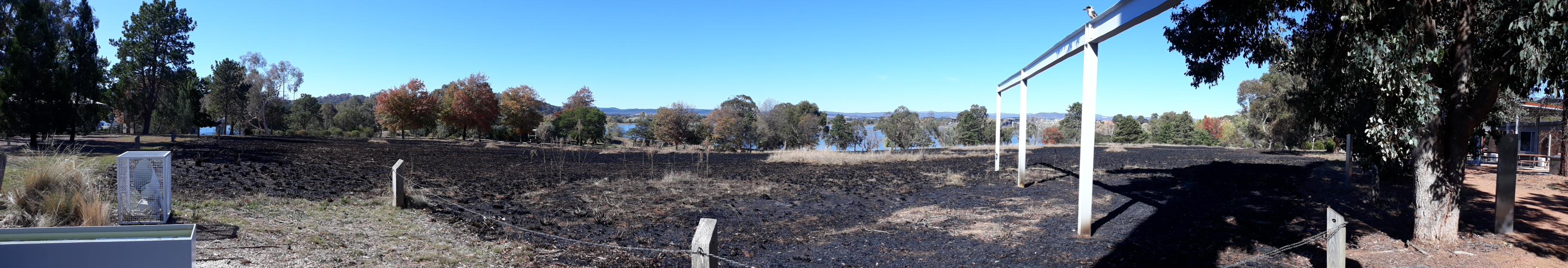 Areas of burnt grassland