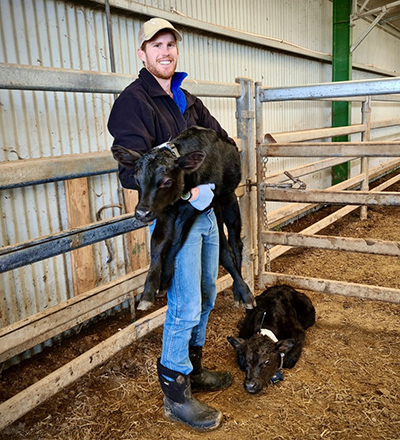 Dr Rory Nevard with a calf
