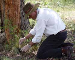 CSU researcher Dr David Jenkins collecting faeces for his project on hydatid worms in dogs.
