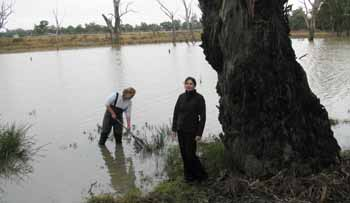 Dr Skye Wassens (foreground) with Research Assistant Ms Carmen Amos monitoring the ecosystems response to environmental flooding.