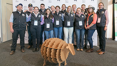 The CSU team at the National Merino Challenge, image courtesy AWI