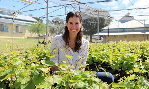 National recognition for Charles Sturt wine researcher