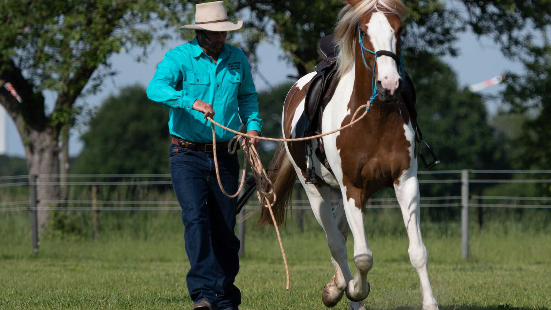 Equine Centre in Wagga Wagga to host renowned horse trainer