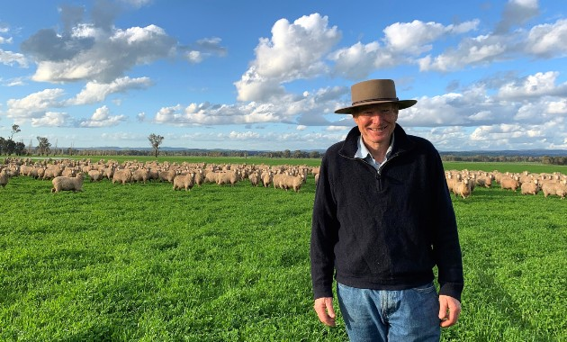 Benchmarking sustainability of Australian sheep industry