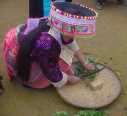 Hmong womans preHmong farmer preparing livestock feed