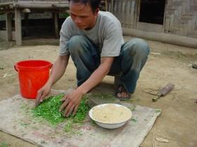 FarmeFarmer preparing pig feed