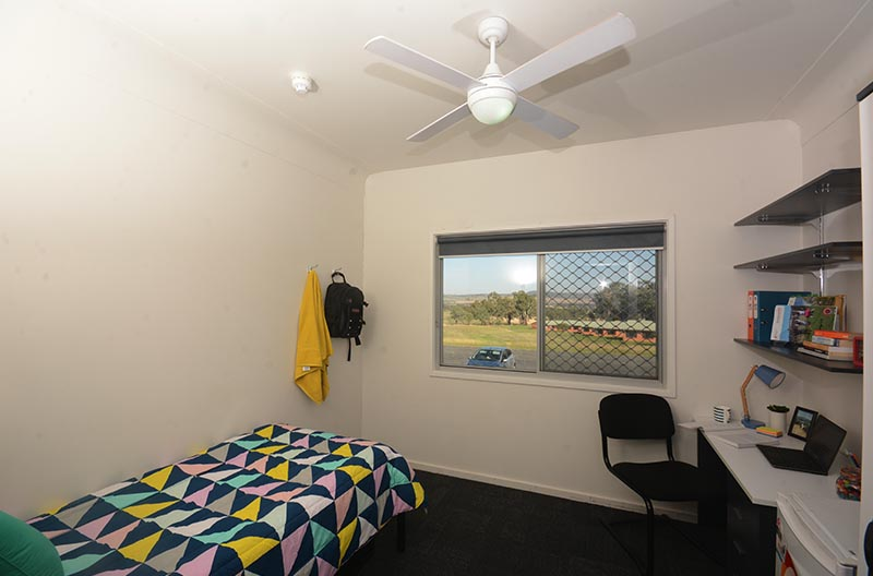 Sleeping and study areas in a room