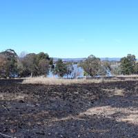 Grasslands Burn
