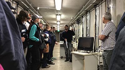 The underground root laboratory