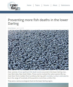 Fish deaths in the Lower Darling