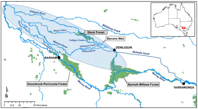 Map of the project area on the Edward-Wakool river systems.