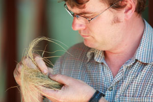 CSU's Aaron Simmons is finding new ways to fight Serrated Tussock