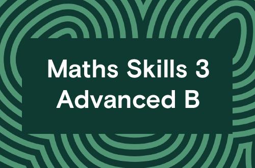 Maths Skills 3 - Advanced B