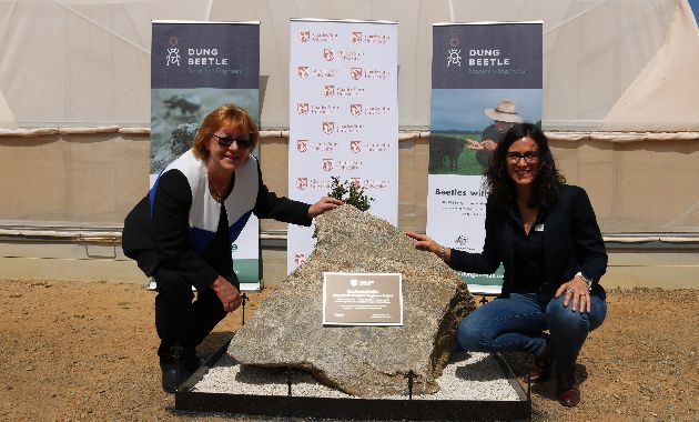 Charles Sturt celebrates milestone in national dung beetle research