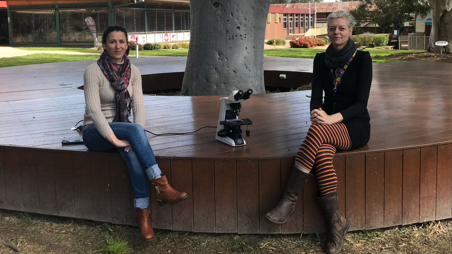 Grant secures next generation of STEM education in regional NSW