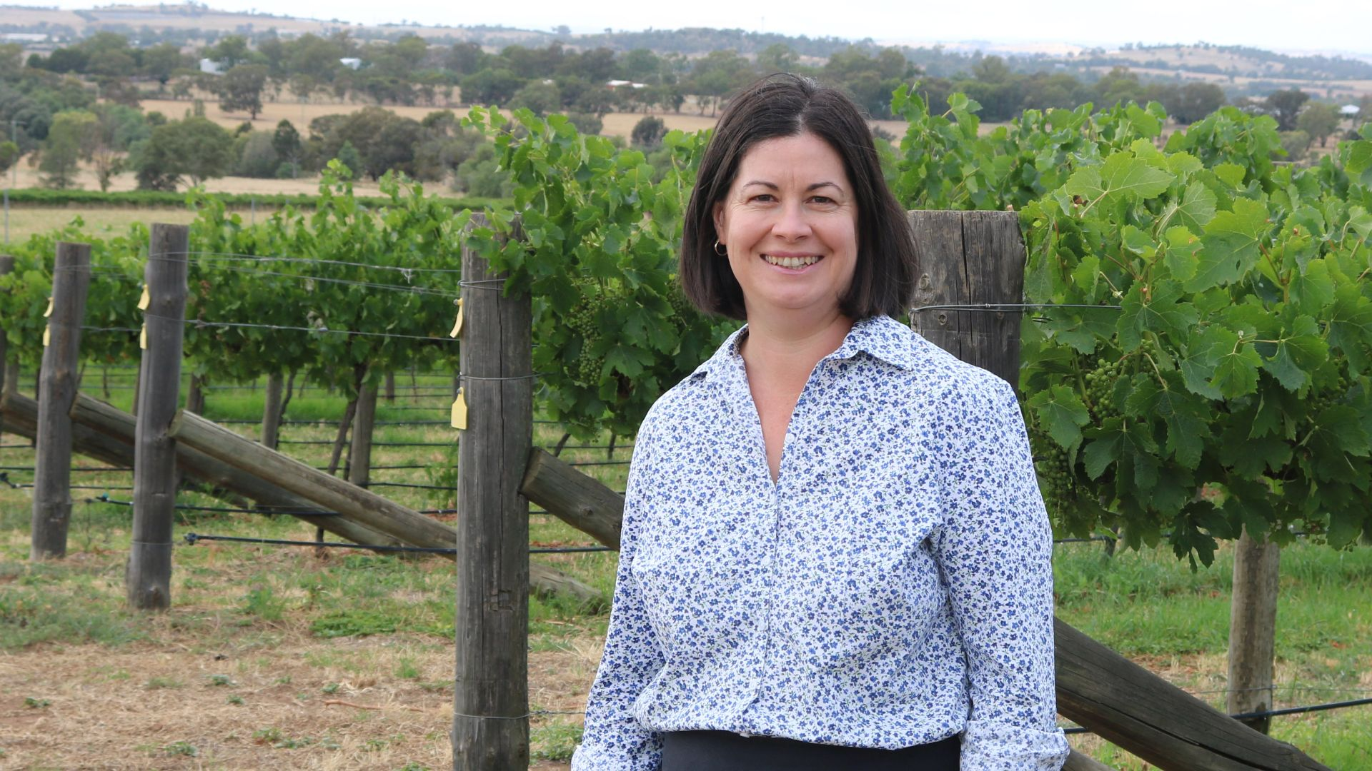 Bolstering Australia's sustainable viticultural practices