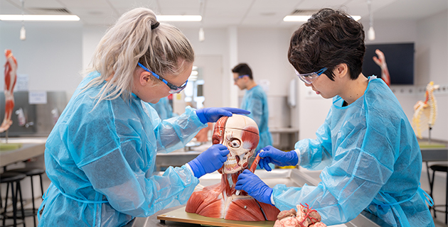 Best way to learn medicine? Hands-on!
