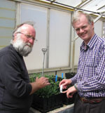 Dr Peter Orchard and Dr Geoffrey Burrows with seedlings in the glasshouse
