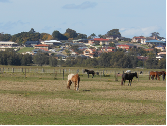 Rural land on urban fringe Hunter Valley NSW