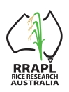 RRAPL Rice Research Australia