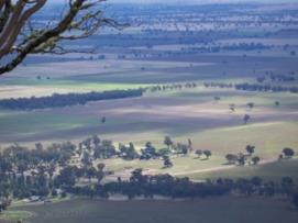 View of paddocks in a wide landscape