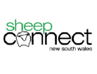 Sheep Connect