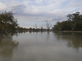 Dry Lake Yanco Creek