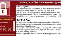 Malware screen