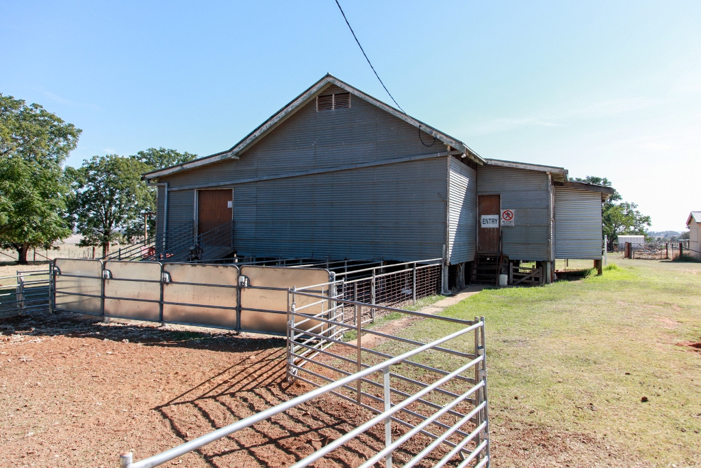 WW Shearing Shed Refurbishment