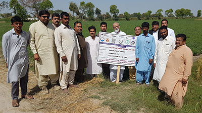 the team visiting a field site in Pakistan