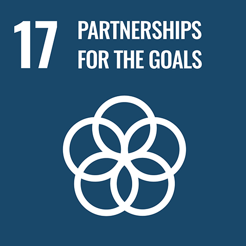Goal 17 - Partnerships for the goals