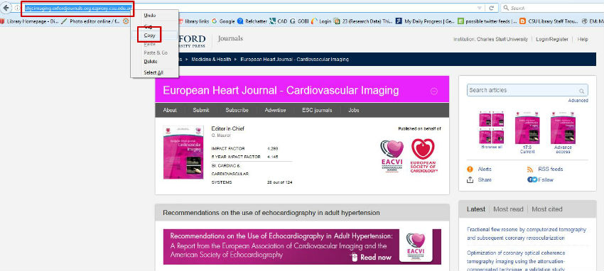 screen sample of the Oxford Journal database with the webpage URL highlighted