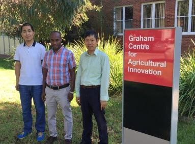 Assoc Prof Xiaojun Shen with Drs Ketema Zeleke (CSU) and De Li Liu (NSW DPI)