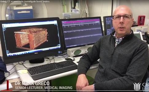 Dr Mark Greco
