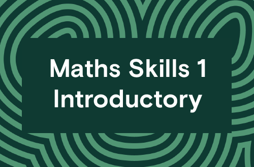 Maths Skills 1 - Introductory