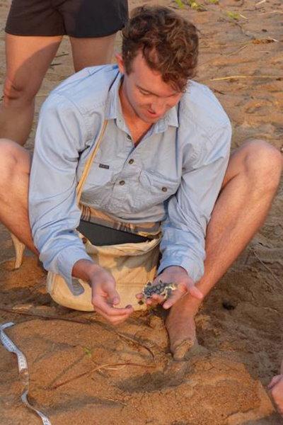 """Holding a Flatback Turtle - """"Australia's Turtle"""""""