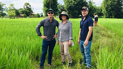 Volunteers Matt Champness (left) and Stephen Lang (right) examining rice crops with mentor Deirdre Lemerle (centre)