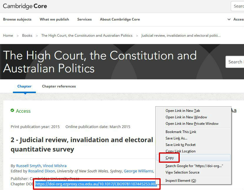 screen sample of the Cambridge website with the 'Chapter DOI' highlighted