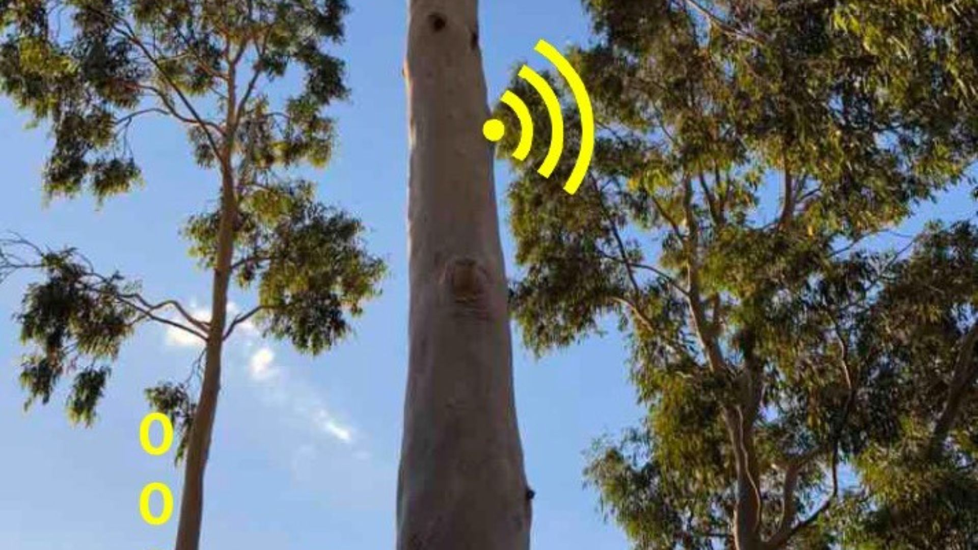 Smart technologies in North West NSW; a regional-rural study