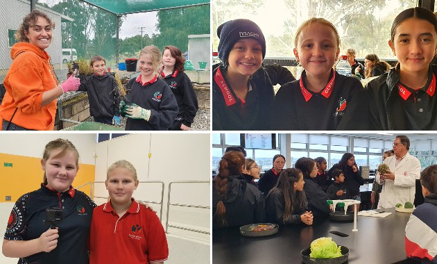 Primary school students take on university for a day