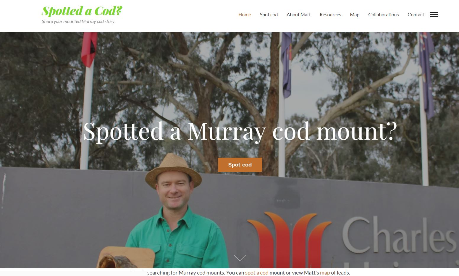 Spotted a Murray cod mount?