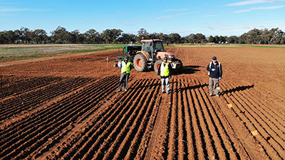 Winter planting of weed competitive wheat underway for winter 2020 following healthy autumn rains in the Riverina