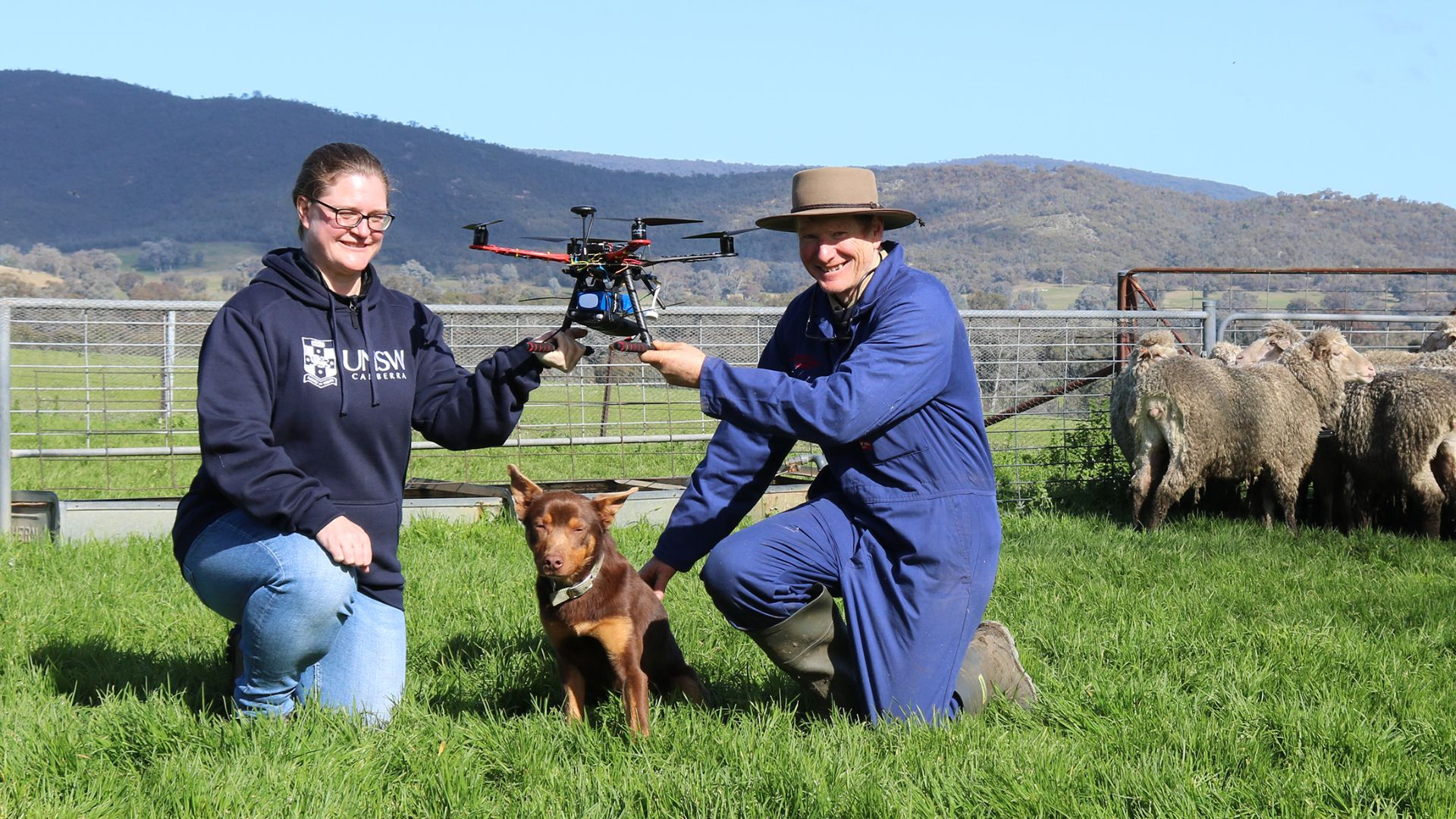 Dogs and drones: unlocking the benefits of AI mustering