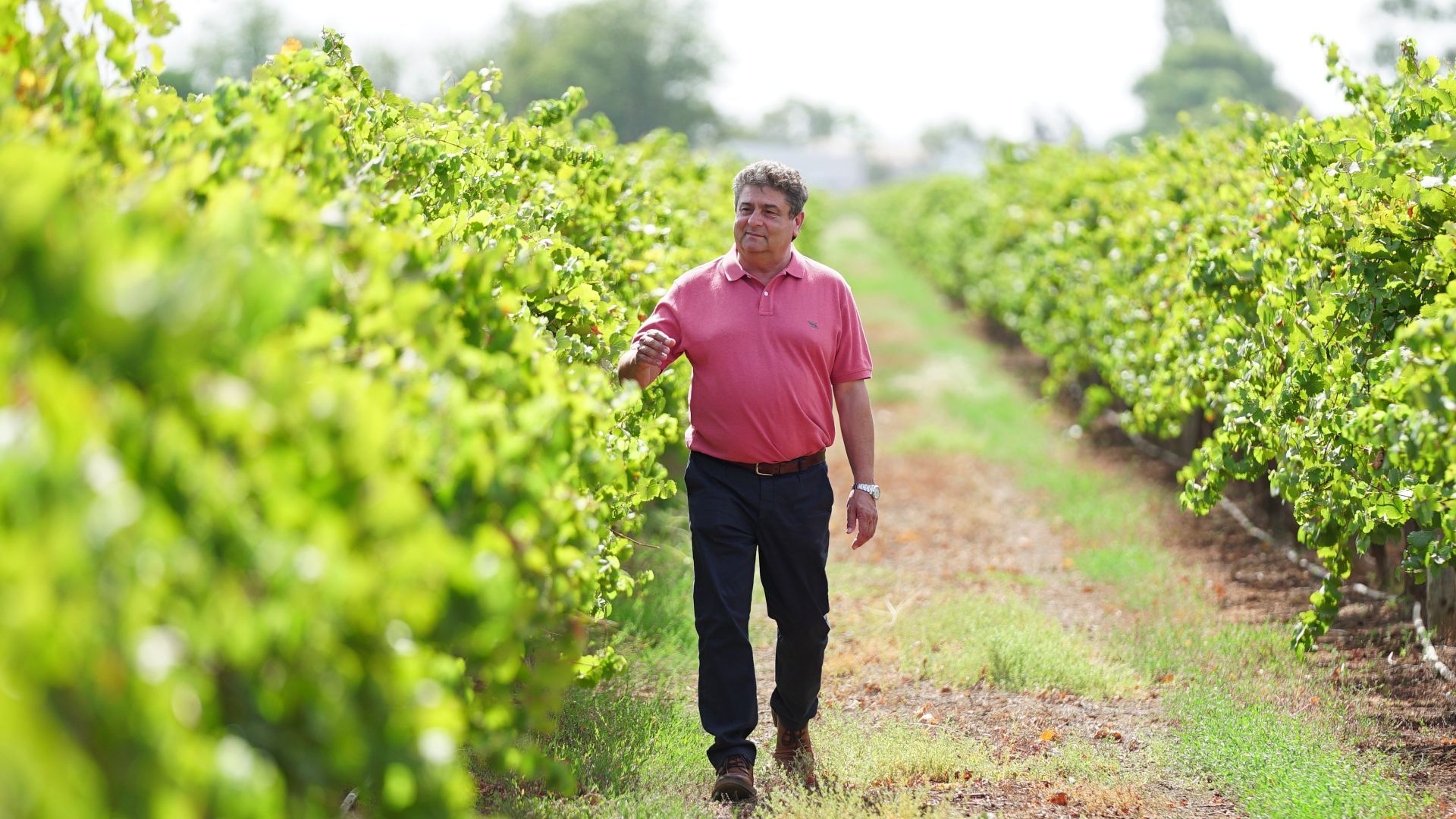 Leading wine company supports research scholarship