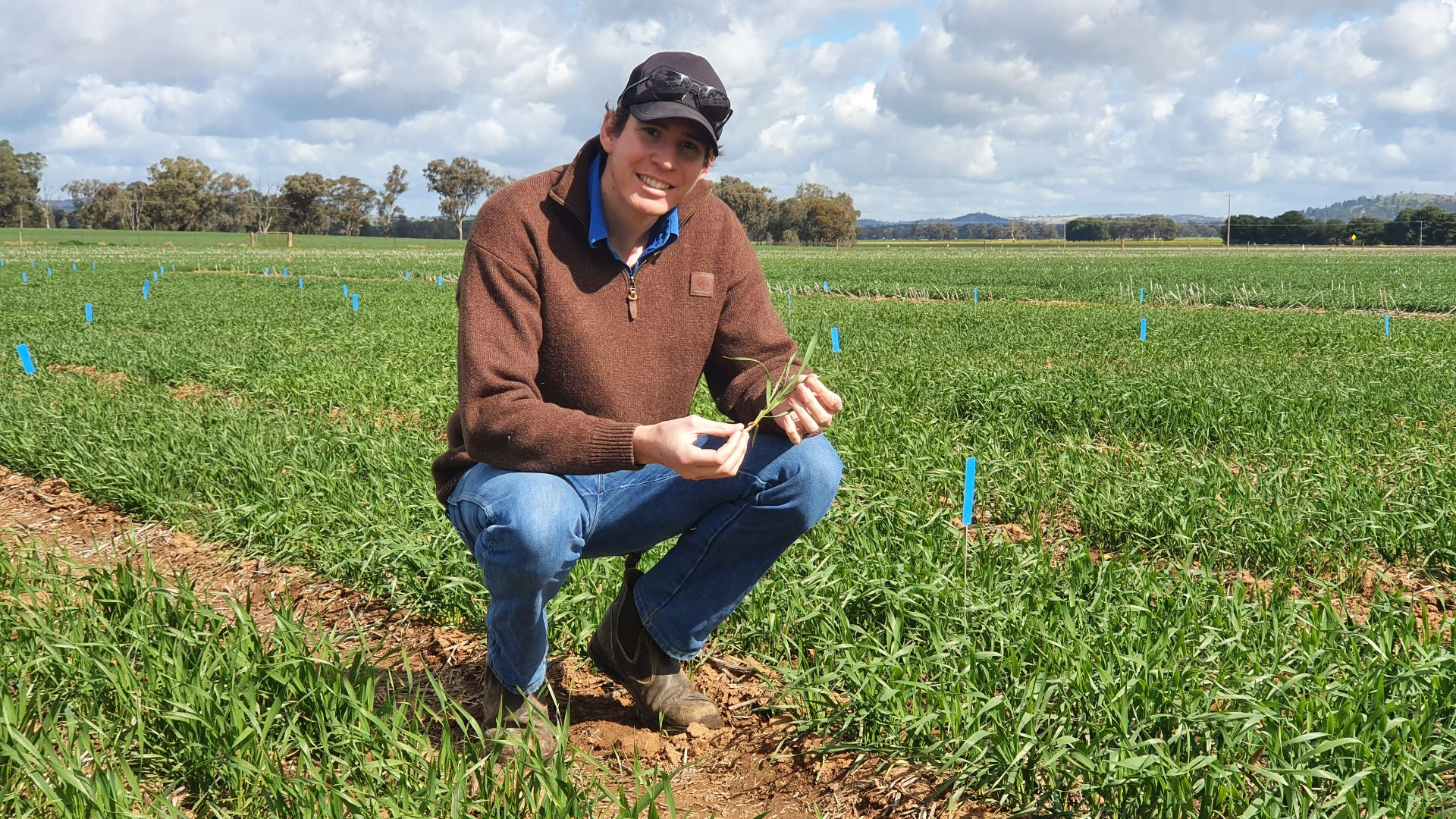 From Farrer to space: new PhD research investigates characteristics of fast-growing wheat