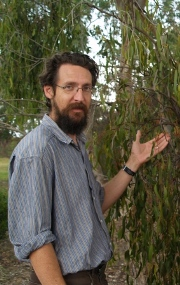 Associate Professor David Watson and Box Mistletoe