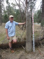 Dr Peter Spooner and a survey blaze tree
