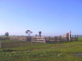 Stockyards on a property