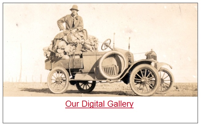 Visit our digital gallery